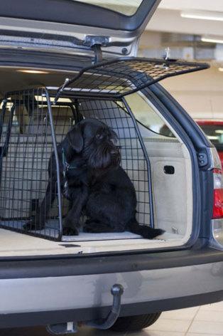 Artfex Hundbur till Mitsubishi Galant Kombi 1998-